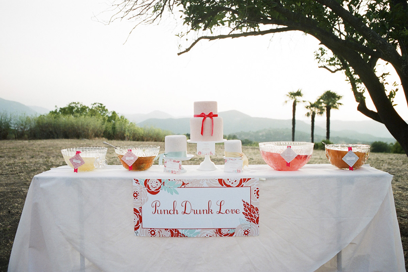 Cake And Punch Reception Decor : Save